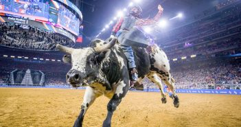 Houston Rodeo 2020
